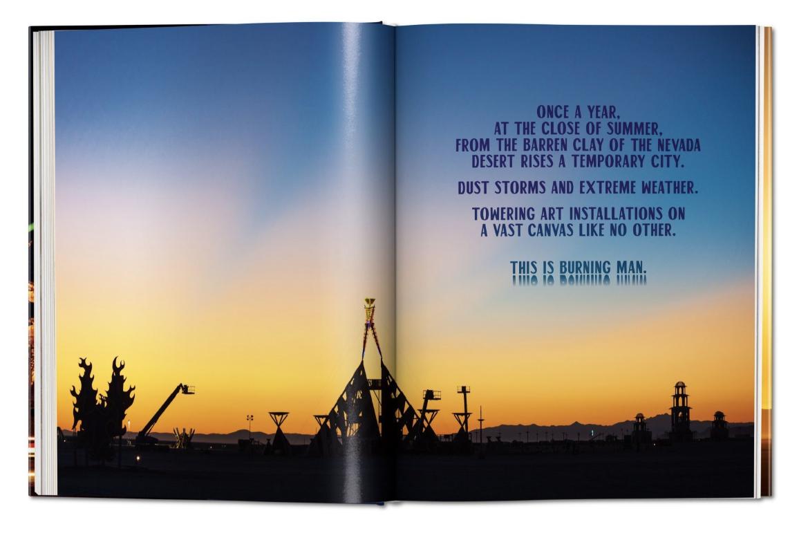 The Art of Burning Man festival book